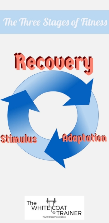 exercise-recovery-strategies