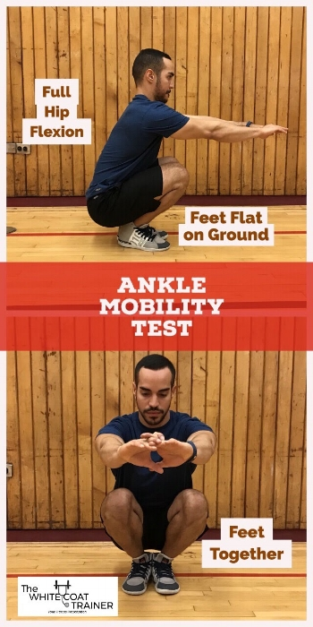 ankle-mobility-test