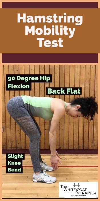 hamstring-flexibiity-test