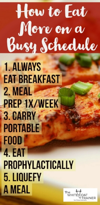 6-meals-a-day-plan