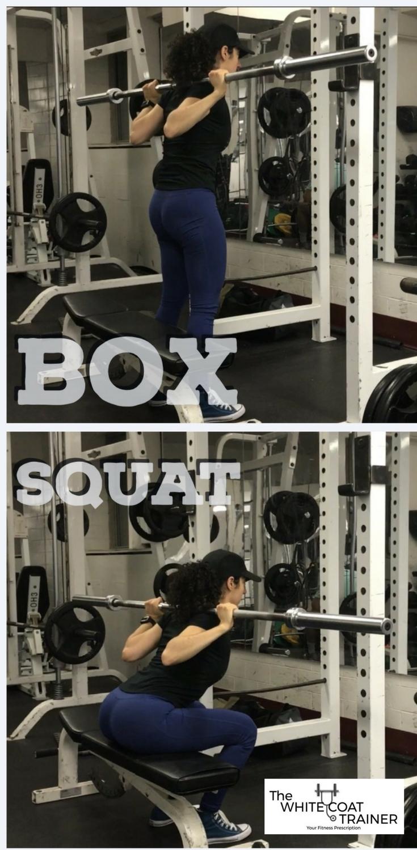 best-quad-exercises