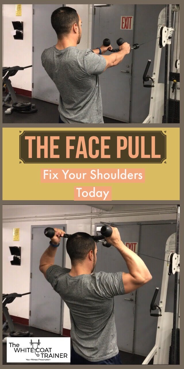 best-upper-back-exercises-posterior-delts