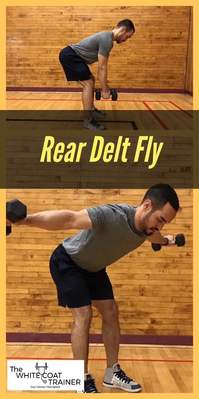 best-back-exercises