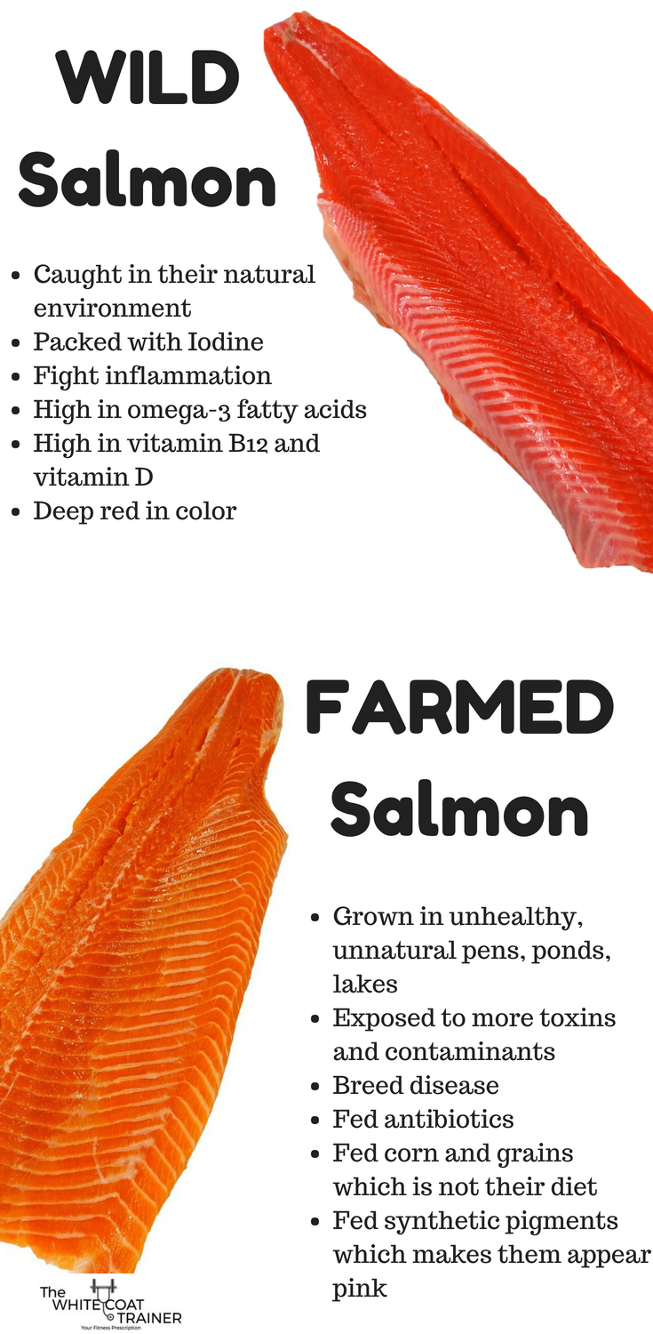 wild-salmon-vs-farmed-salmon