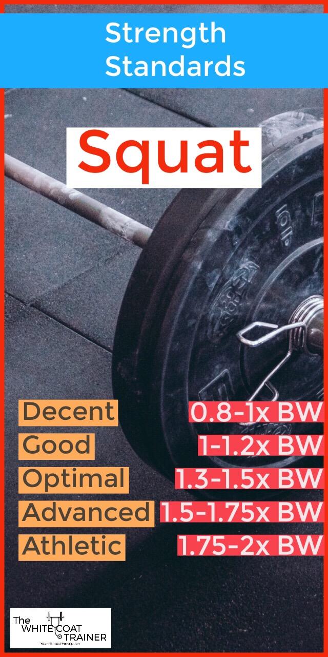 squat-strength-standards