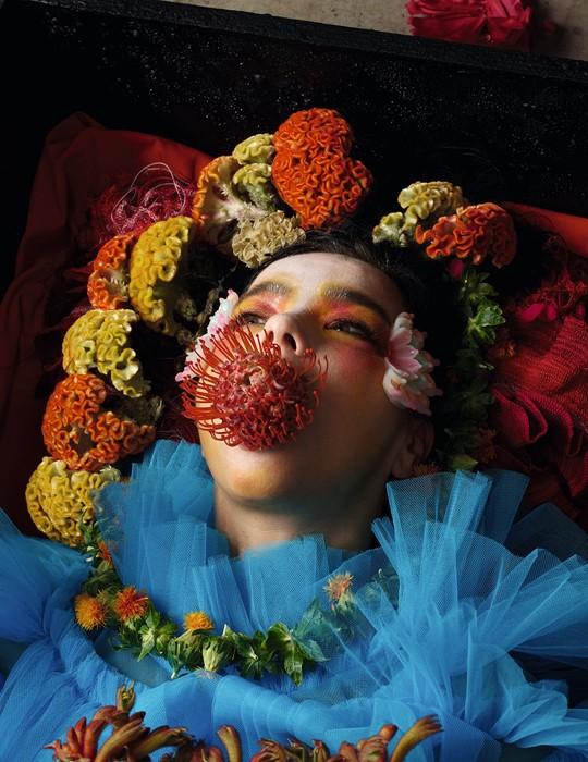 Björk for Dazed's autumn 2017 issue Photography Jesse Kanda