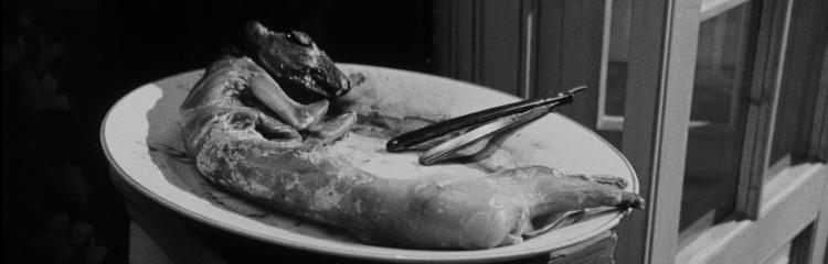 Repulsion-1965-rabbit.jpg