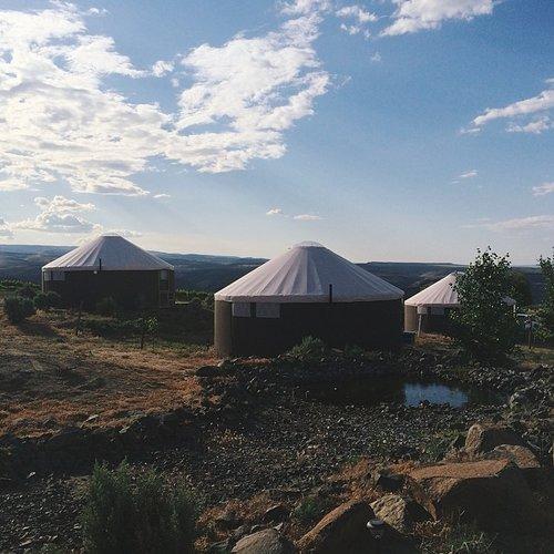 Desert Life Quincy Wa A Rah Mini Adventure The Rad And Hungry Blog