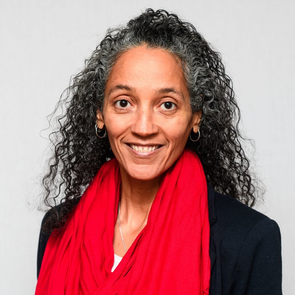GINA HARRIS - candidate for 2019 District 200 School Board
