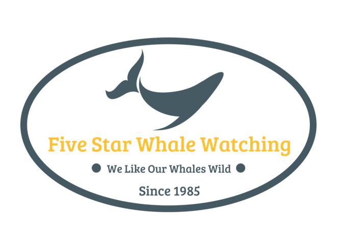 Five Star Whale Watching.png