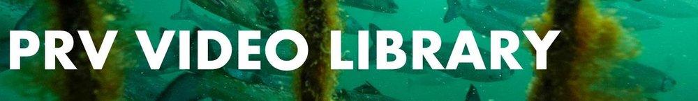PRV Video Library banner5.jpg