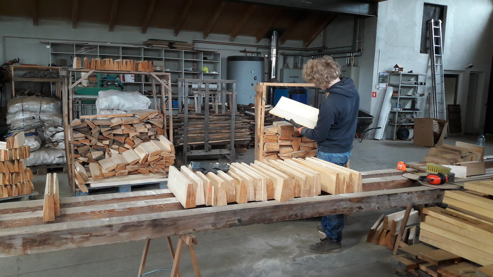 Selecting Tonewood in Slovenia. Sveti Jurij, Slovenia