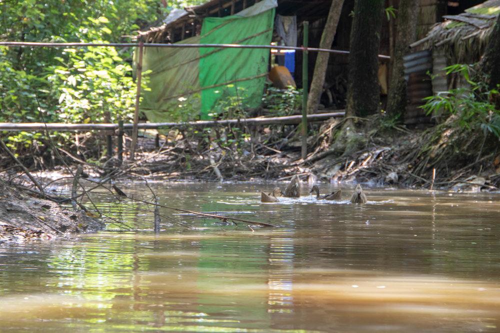 Myanmar-87.jpg