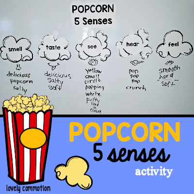 Physical Properties Of Popcorn Kernels