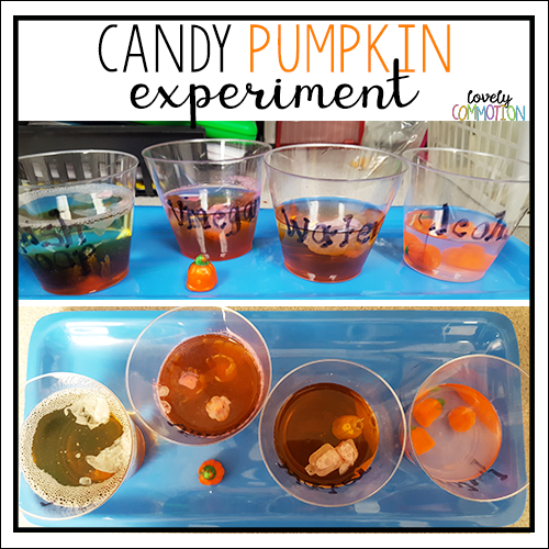 pumpkin science experiment preschool