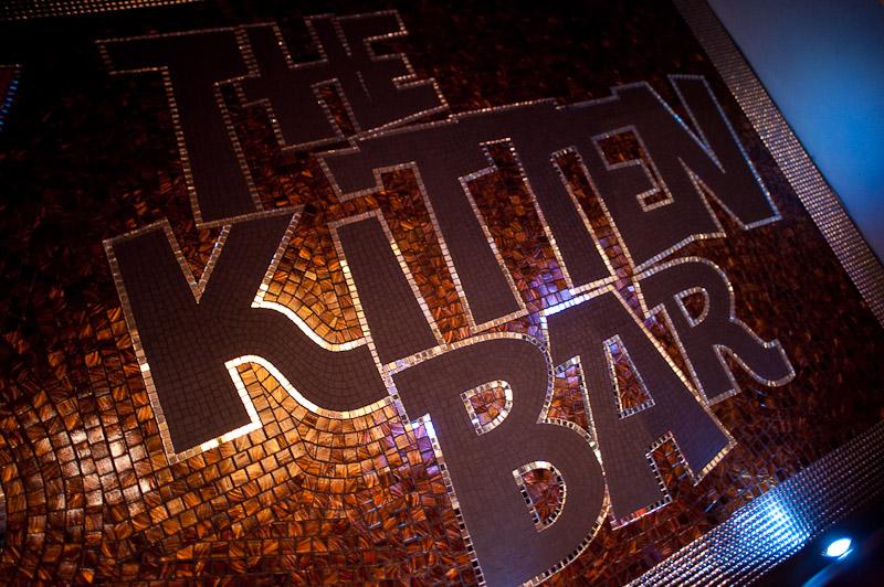kitten bar.jpg