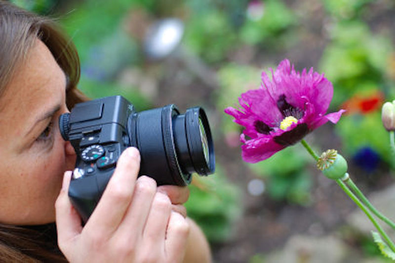 Capturing flower