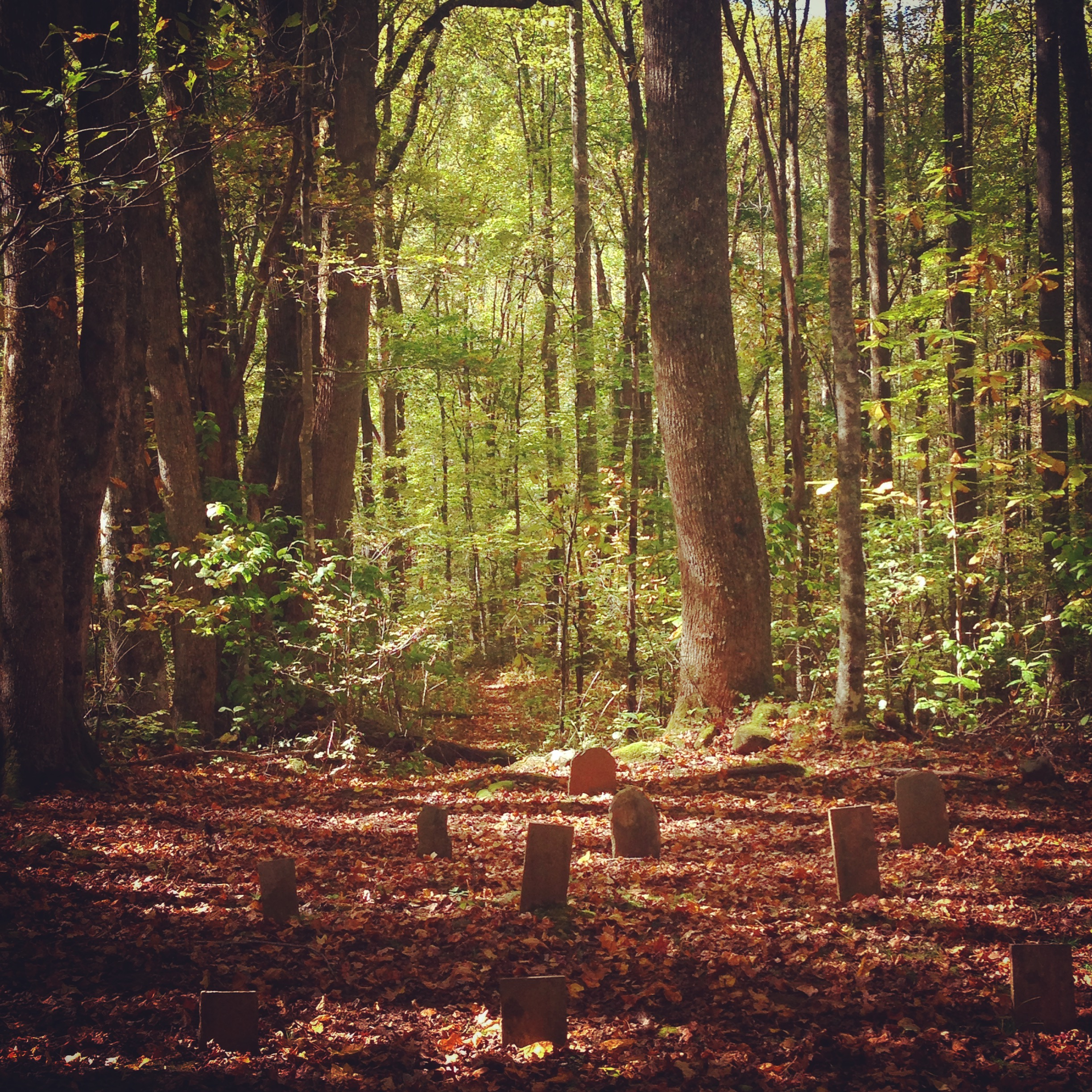 My great great grandmother's cemetery in Great Smoky Mountains National Park.