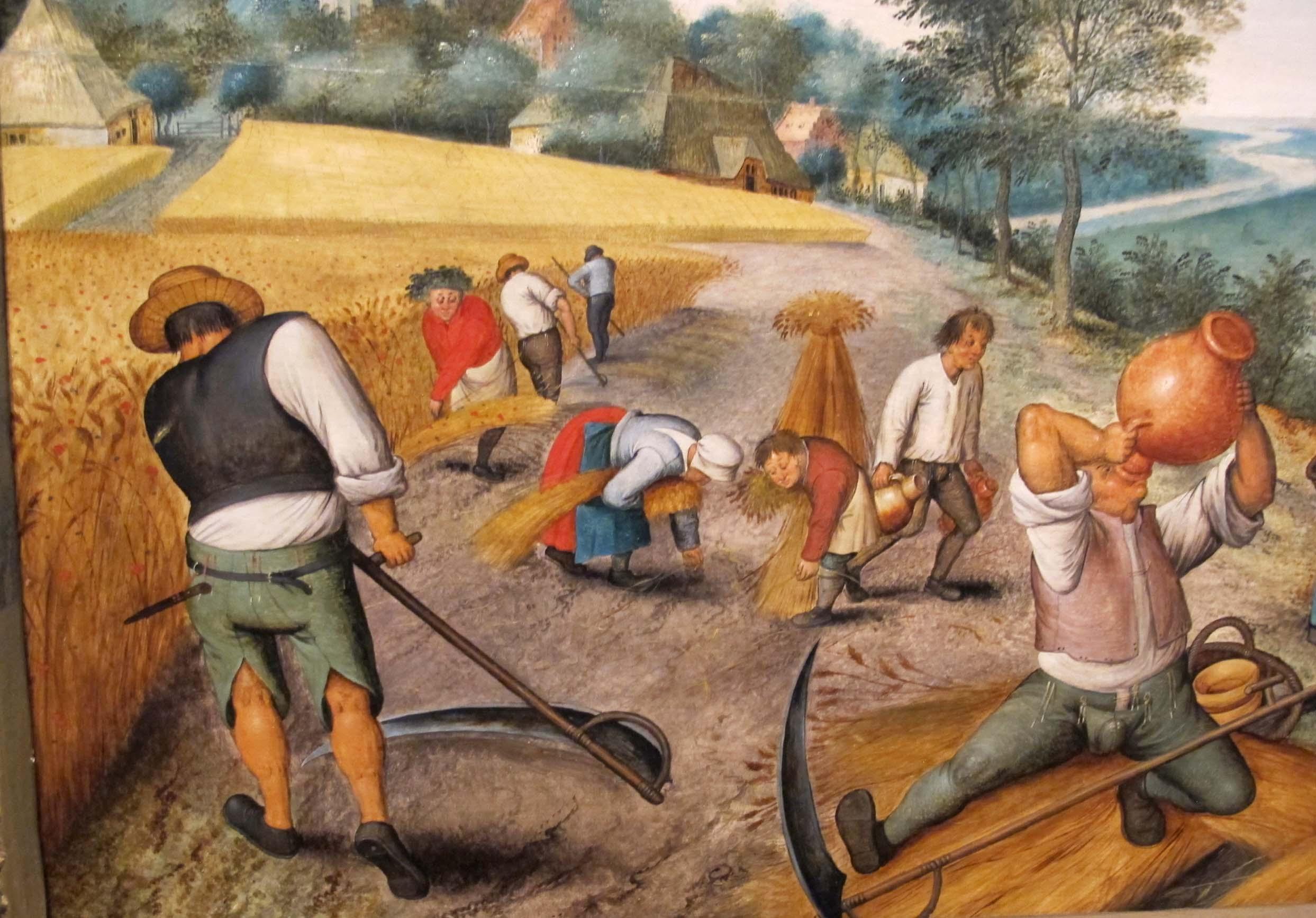 Peasants harvesting crops, by Flemish artist Pieter Brueghel, 17th century