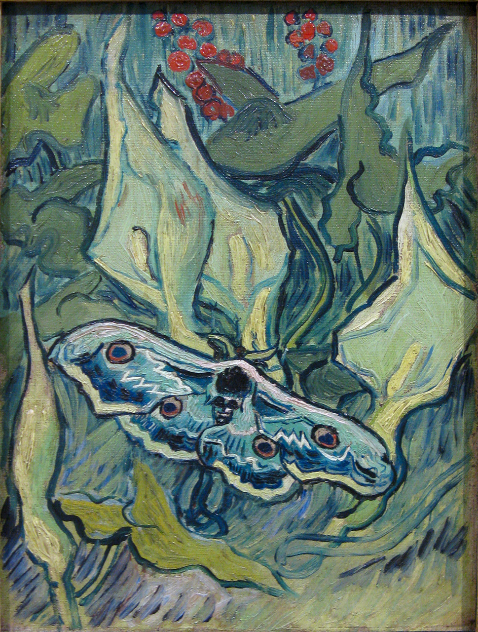 Moth by Van Gogh