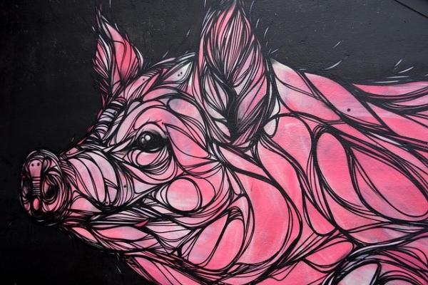pig-981697_640