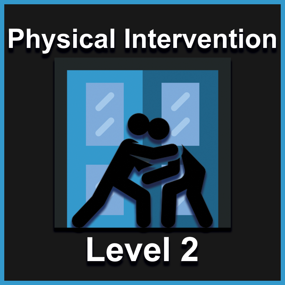 Physical Intervention L2.png