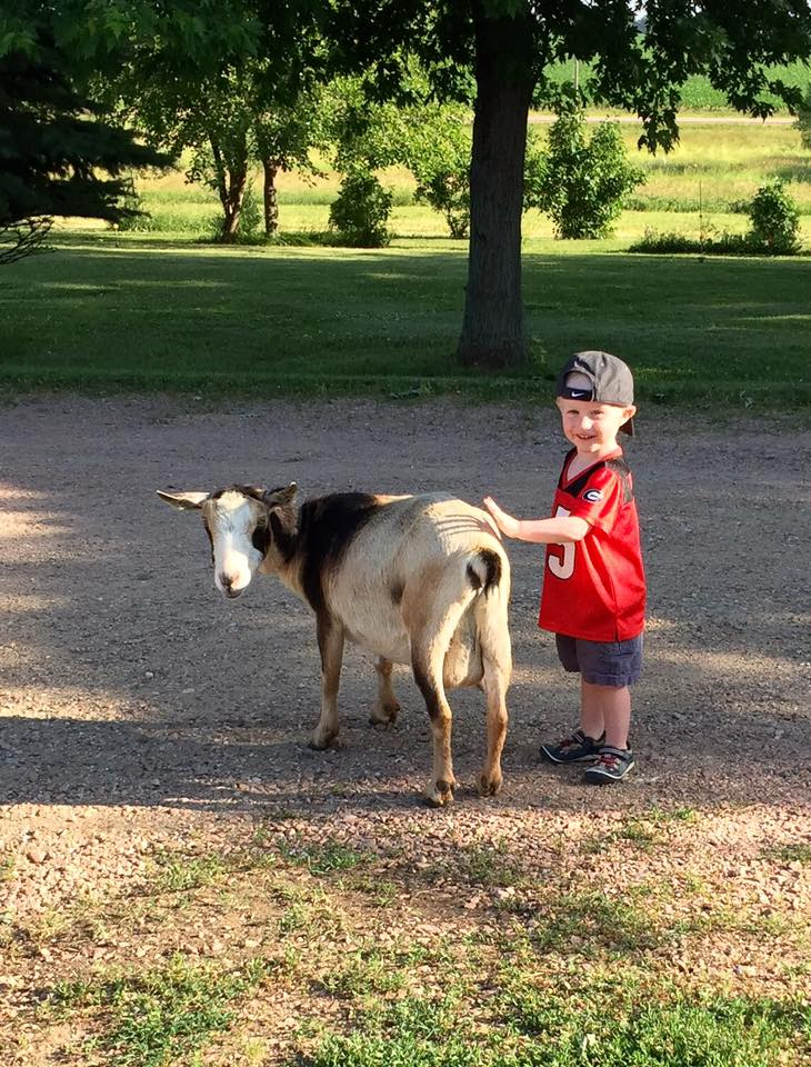 Boy and goat.jpg