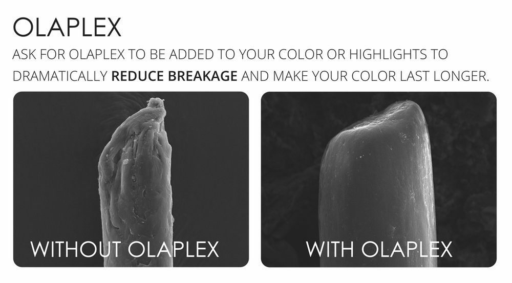 Olaplex-with-or-without.jpg