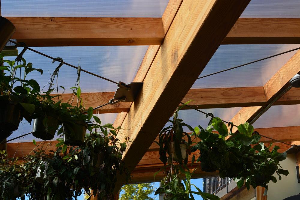 Harka Architecture_Pistils Nursery_Solarium_Conservatory (8).JPG
