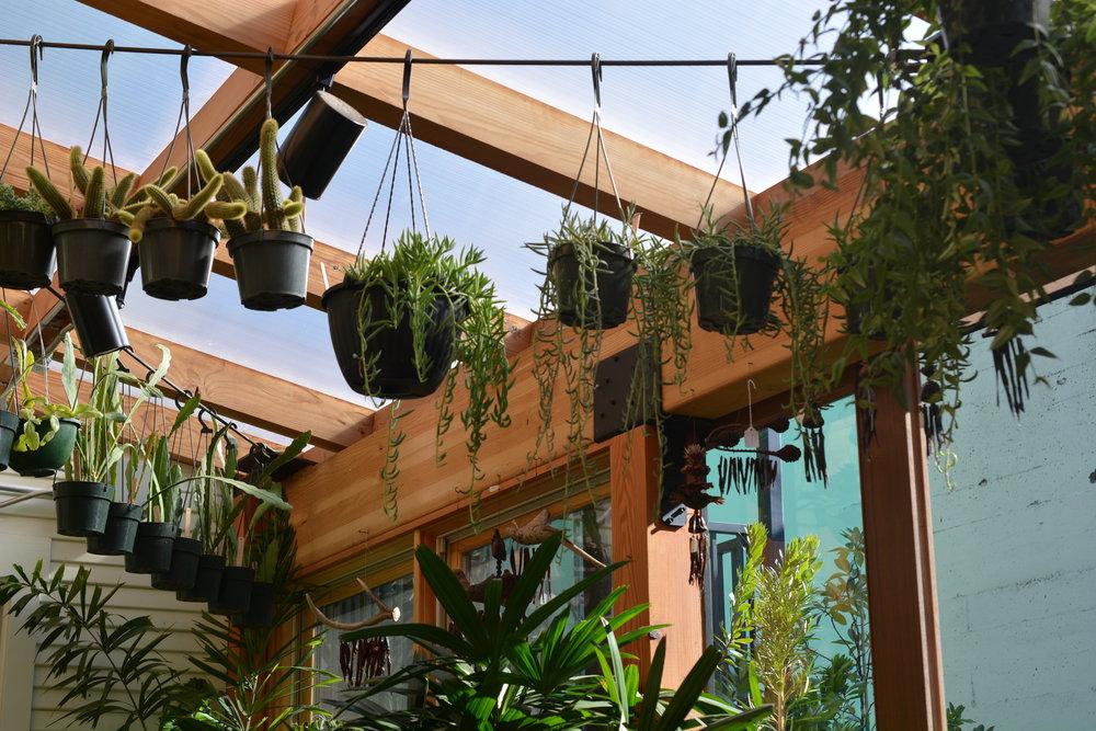 Harka Architecture_Pistils Nursery_Solarium_Conservatory (11).JPG