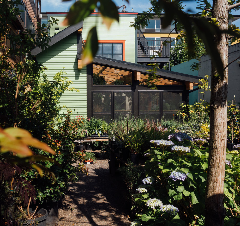 Harka Architecture_Pistils Nursery_Solarium_Conservatory (26).jpg