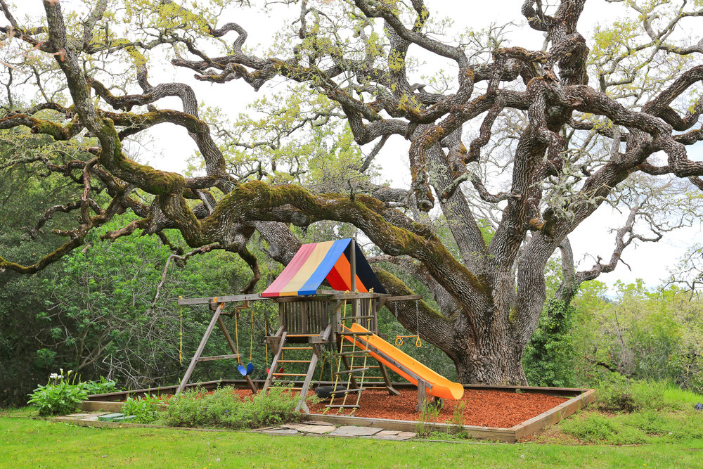 Summitwood play structure.jpg