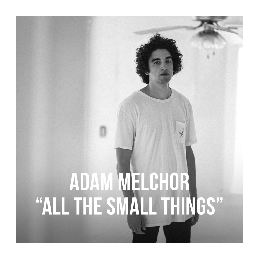 artist photo Adam Melchor w text w border.png