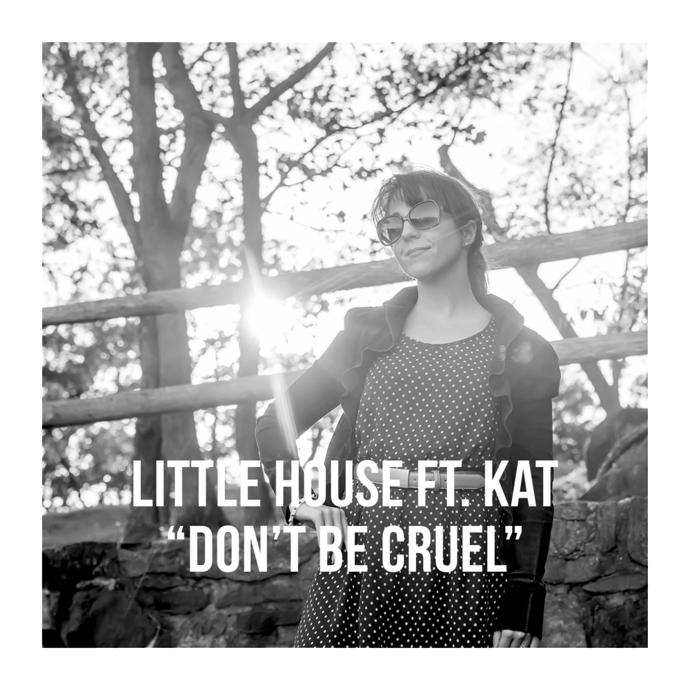 artist photo Little House ft Kat Cruel w text w border.png