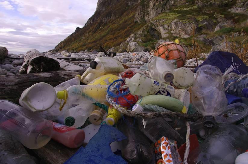 plastic_marine_litter.jpg.0x545_q70_crop-scale.jpg