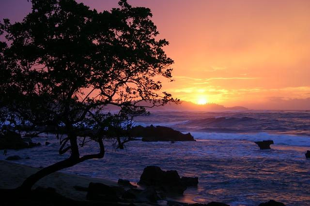 sunset-1588606_640.jpg