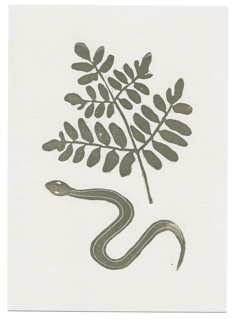 untitled (snake + royal fern)
