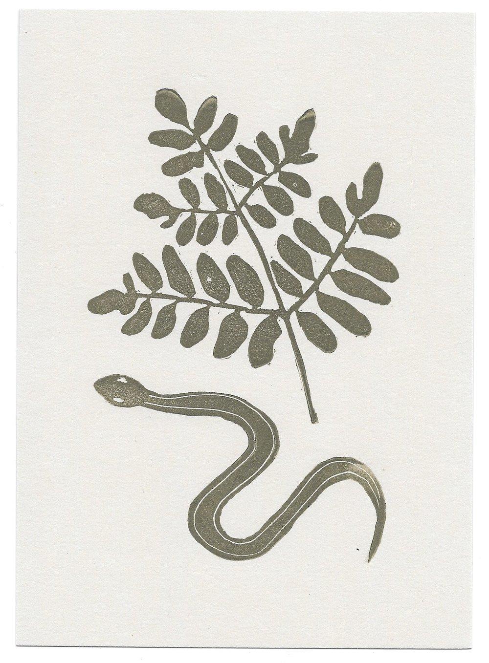 untitled (snake + royal fern)