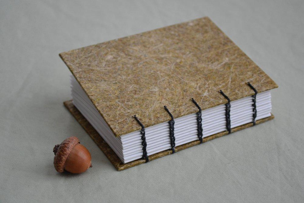 tiny daylily journal