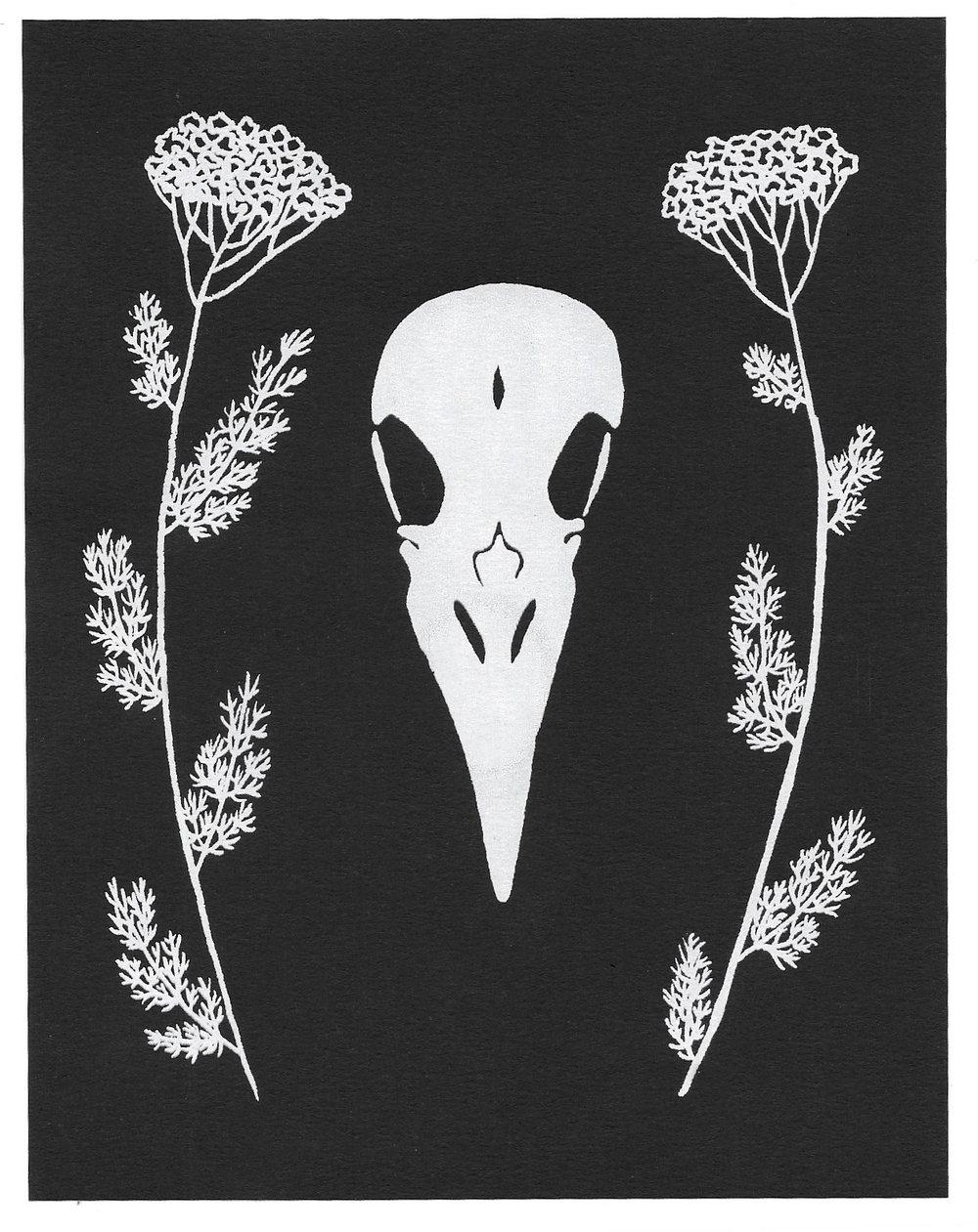omens (crow skull + yarrow)