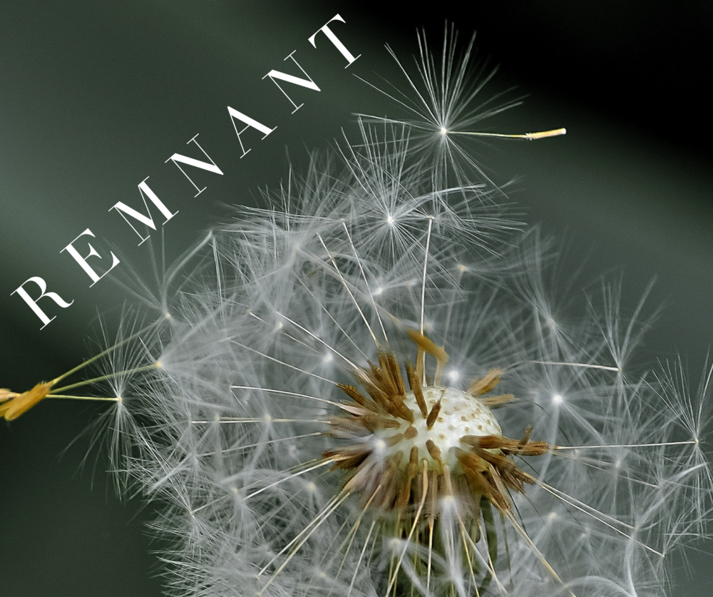 Sermon Graphic_Remnant.png