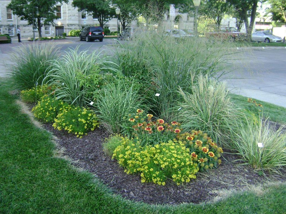 Deciduous sublime landscapes for Ornamental grasses for small spaces