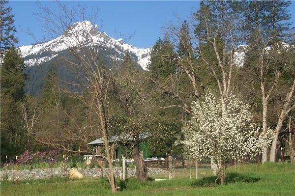 White capped Trinity Alps