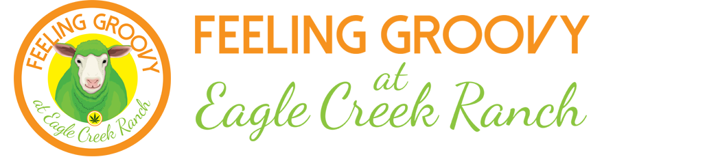 Feeling Groovy at Eagle Creek Ranch Cannabis Friendly Hotel & Resort