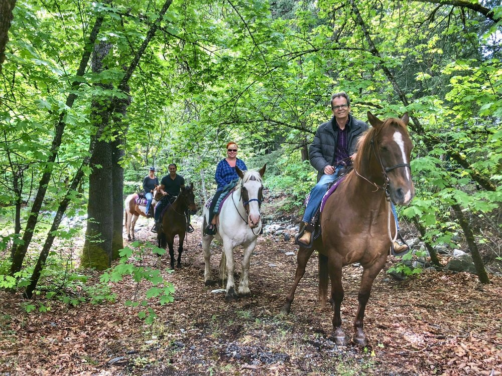 horseback rides at Feeling Groovy at eagle creek ranch