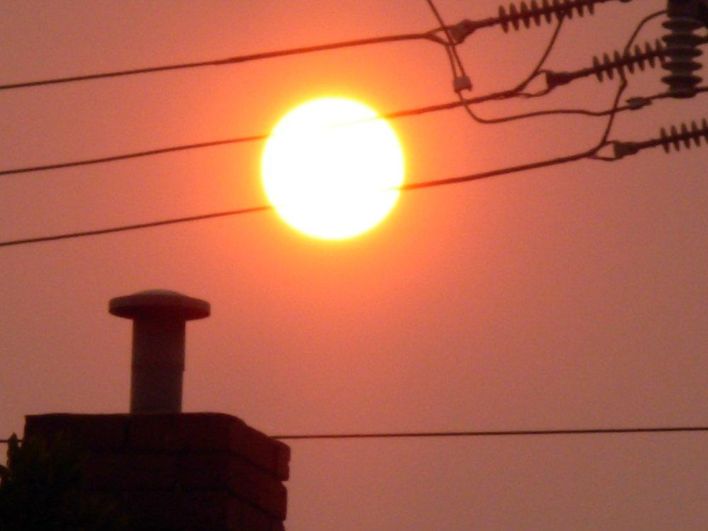 sun-221089.jpg