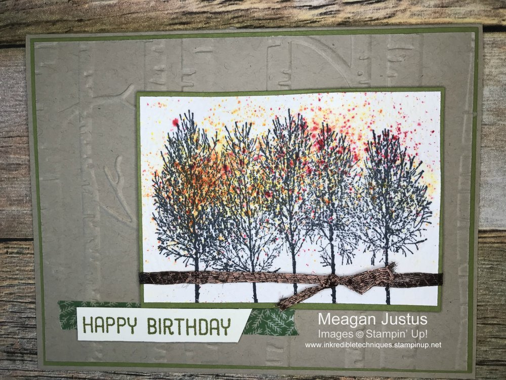 Winter Woods by Stampin' Up! | Brusho Technique