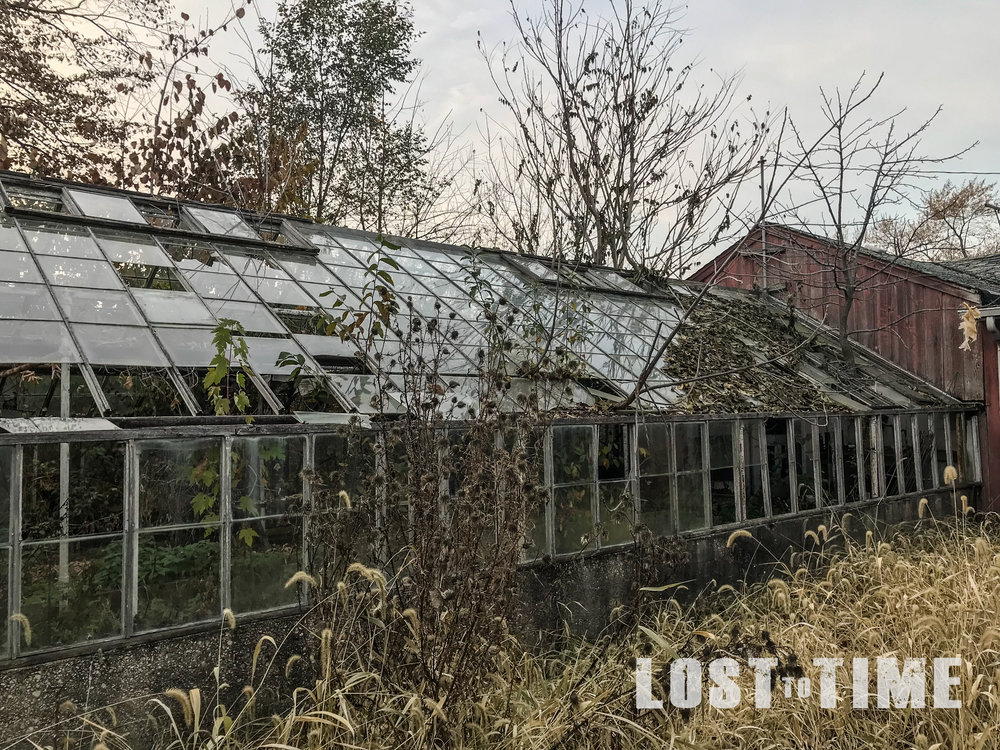 LOSTtoTIME Lake County Greenhouse Nov 13 - 7-2.jpg