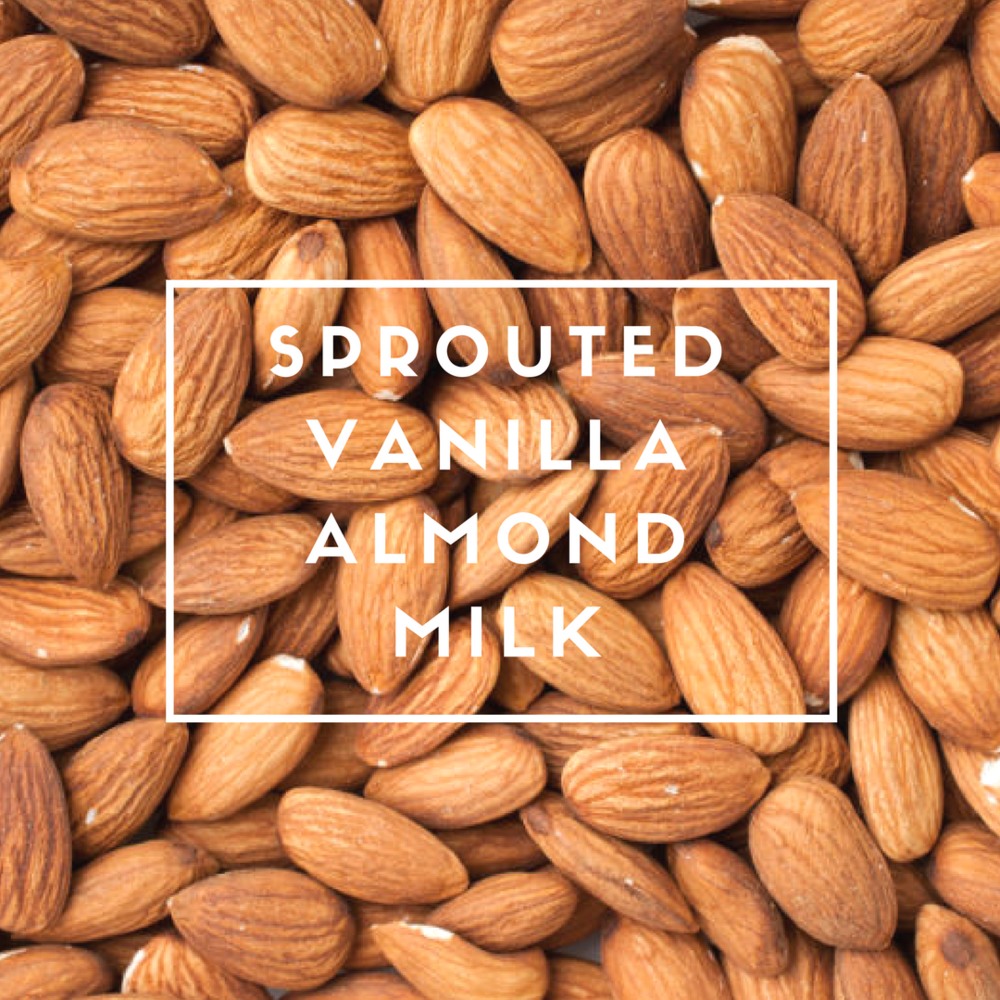 SPROUTED VANILLA ALMOND MILK.png