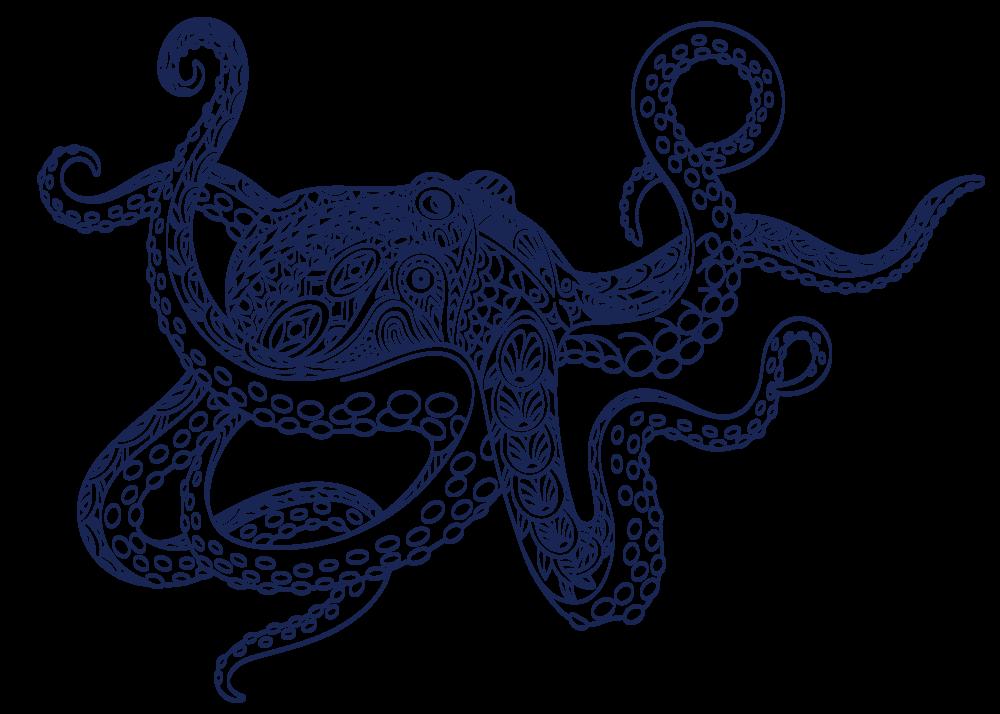 octopus_1.png